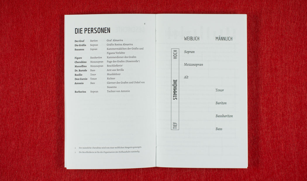 Von der Problematik eine Oper zu übersetzen